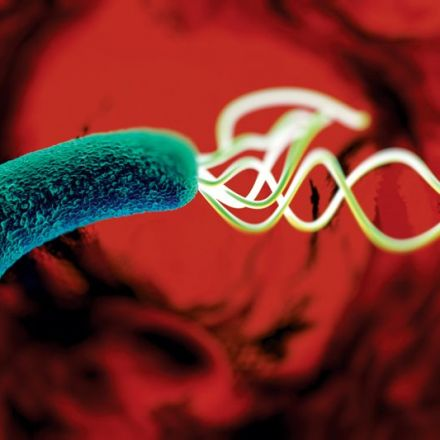 FDA Approves Talicia for Helicobacter pylori Infections