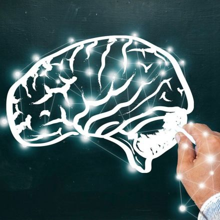 Mind's quality control center found in long-ignored brain area