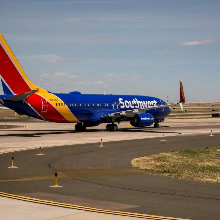Dog Injures Child Boarding Southwest Flight, Airline Says