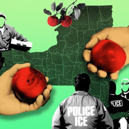 Fear of Deportation Is Making Your Food More Expensive