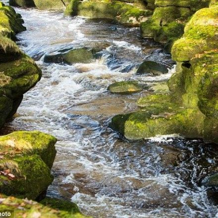 Why a river in Yorkshire 'is world's most dangerous stretch of water'