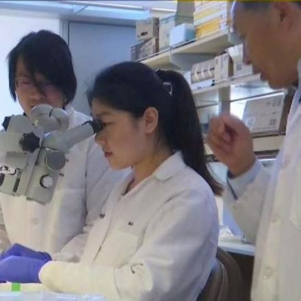 CRISPR Could Eliminate Genetic Disease: UCSD Scientist