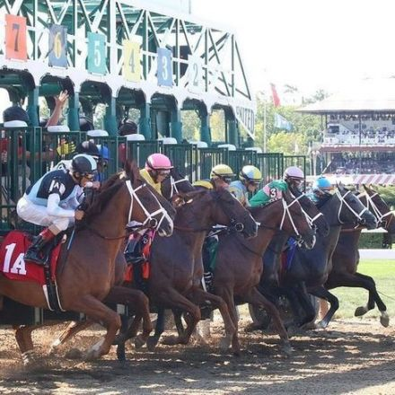 Eleven horses have died at Saratoga Race Course this season