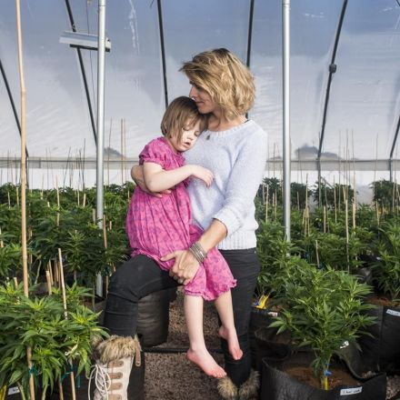 Is marijuana the world's most effective treatment for autism?