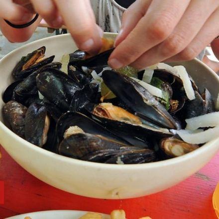 Plastic found in British mussels