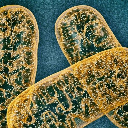 Targeting an RNA-binding protein to fight aging